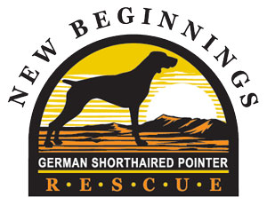 Logo of charity New Beginnings German Shorthaired Pointer Rescue