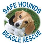 Safe Hounds Beagle Rescue, Inc.