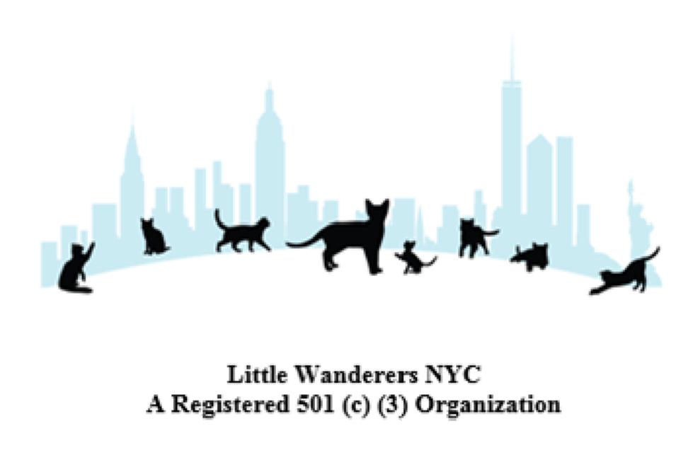 Logo of charity Little Wanderers NYC