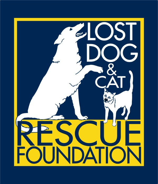 Logo of charity Lost Dog Rescue Foundation