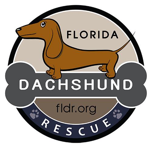 Florida Dachshund Rescue INC