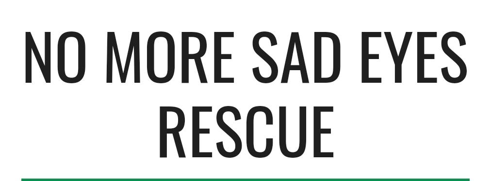 Logo of charity No More Sad Eyes Rescue