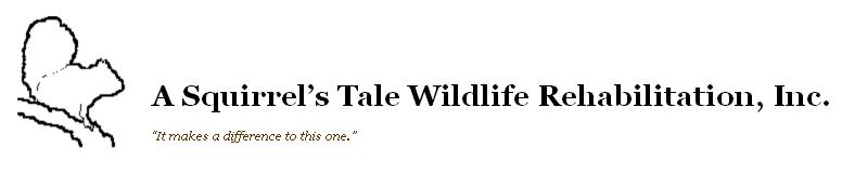 A Squirrel's Tale Wildlife Rehabilitation, Inc.