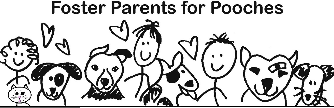 Foster Parents For Pooches Inc